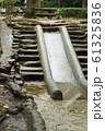 森の中の滑り台 61325836