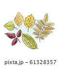 Sketch of autumn leaves for your design 61328357