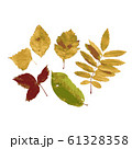 Set of autumn leaves for your design 61328358