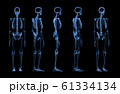 set of human skeleton x-ray 61334134