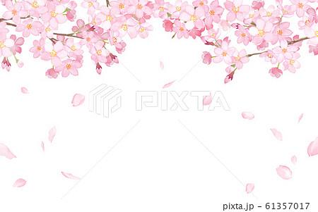 桜と散る花びらのフレーム 水彩イラスト 61357017