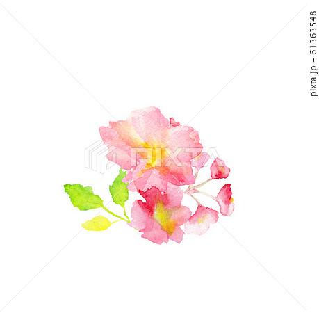 桜 サクラ 花 水彩 イラスト 61363548
