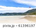 自然が多い島のビーチ 61396197