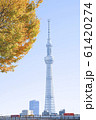 Tokyo Sky Tree. One of the tallest observation tower in Tokyo. 61420274