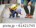 お散歩 61421745