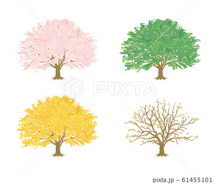 春夏秋冬 -桜の木-(白背景) 61455101
