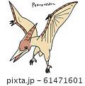 プテラノドン 61471601