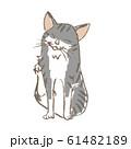 脇を掻く猫 61482189