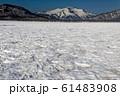 残雪の尾瀬ヶ原から見る至仏山 61483908