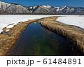 雪解けの尾瀬ヶ原から見る景鶴山 61484891