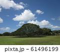 Hawaii 61496199