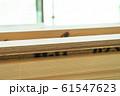 木材 木造建築 61547623
