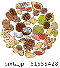 Illustration of nuts and seeds collection circle. Pattern of pecan, cashew, almond in circle form. Different nuts isolated. Pistachio, walnut, cedar seed and other 61555428