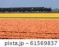 オランダのSL 61569837