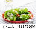 新鮮サラダ 朝食 ヘルシー 61579966