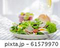 野菜サラダ 61579970