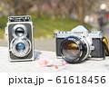 アンティークカメラと梅の花 61618456