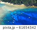 慶良間諸島 空撮 61654342