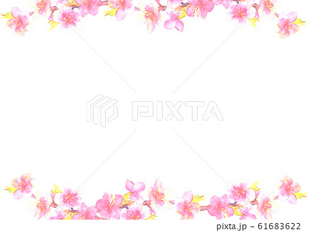 桃 花 桃の花 桃の節句 イラスト 水彩  61683622