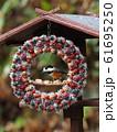 小鳥のリース 61695250