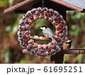 小鳥のリース 61695251