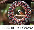 小鳥のリース 61695252