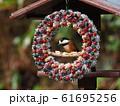 小鳥のリース 61695256