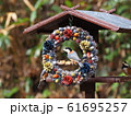 小鳥のリース 61695257