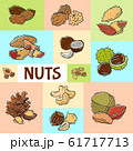 Nuts and seeds collection banner vector illustration. Collection of pecan, cashew, almond printable for flyers or invitation cards 61717713