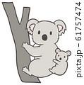 シンプルなコアラの親子のイラスト 61757474