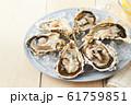 牡蠣 61759851
