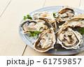 牡蠣 61759857