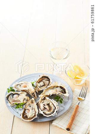 牡蠣 61759861