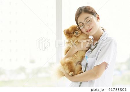 小型犬の診察を行う若い女性 61783301