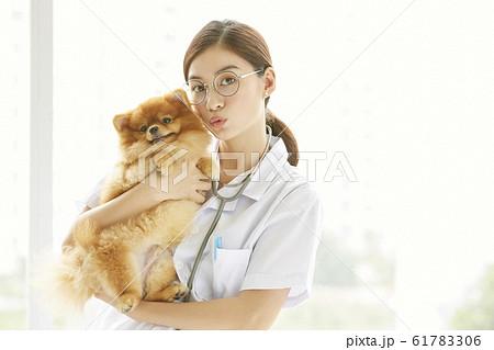 小型犬の診察を行う若い女性 61783306