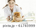 小型犬の診察を行う若い女性 61783999
