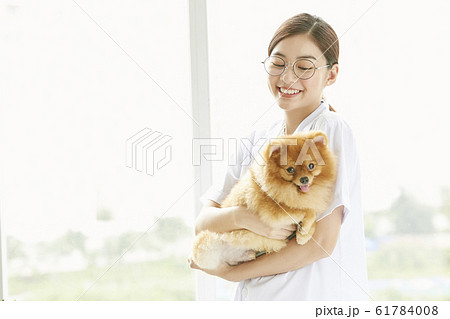小型犬の診察を行う若い女性 61784008