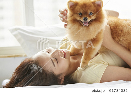 小型犬と暮らす若い女性 61784082