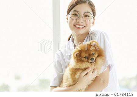 小型犬の診察を行う若い女性 61784118