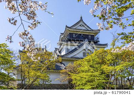 北側から望む岡崎城 61790041