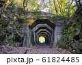 熊本県 美里町の熊延鉄道遺構 八角トンネル  61824485