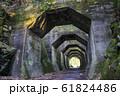 熊本県 美里町の熊延鉄道遺構 八角トンネル  61824486