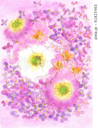 スカビオサとアジサイの花束 1 61825463