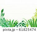 観葉植物 背景 イラスト 園芸 素材 61825474