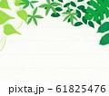観葉植物 背景 イラスト 園芸 素材 61825476