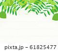 観葉植物 背景 イラスト 園芸 素材 61825477