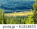 秋のカナディアンロッキー モレーン湖付近の紅葉の川(バンフ国立公園 カナダ・アルバータ州) 61828655