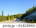 秋のカナディアンロッキー アイスフィールド・パークウェイ沿いの黄葉(カナダ・アルバータ州) 61828660