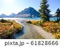 秋のカナディアンロッキー 紅葉のボウ・レイク(赤)(バンフ国立公園 カナダ・アルバータ州) 61828666