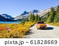 秋のカナディアンロッキー 紅葉のボウ・レイク湖畔(バンフ国立公園 カナダ・アルバータ州) 61828669
